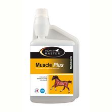 image: Muscle Plus