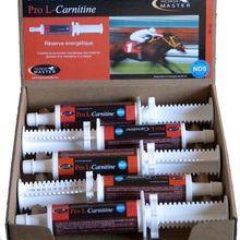 obrázek: Pro L-Carnitine