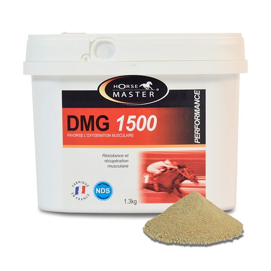 Horse Master DMG 1500 – Feed supplements